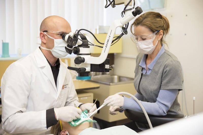 Professeur d'endodontie au travail